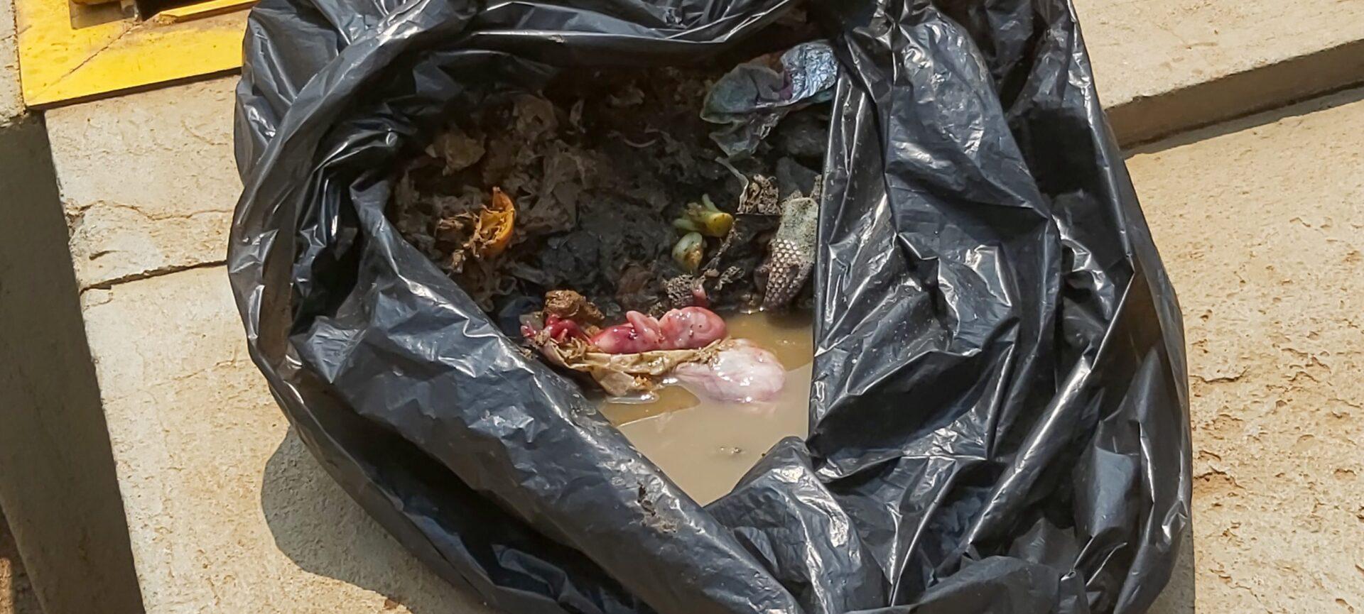 URGENTE: Feto é encontrado dentro de saco plástico em PG