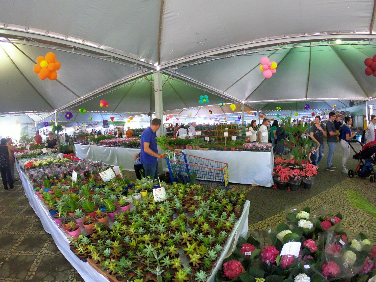 10ª edição da Expo&Flor acontece ainda este ano em PG; veja detalhes