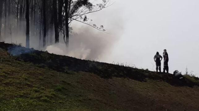 Avião com 4 pessoas cai e incêndio de grandes proporções inicia em mata
