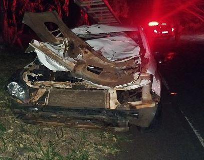 Duas pessoas ficam feridas após carro atropelar vaca