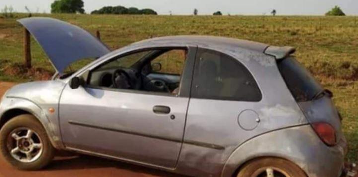 Vaca é encontrada presa dentro de um carro